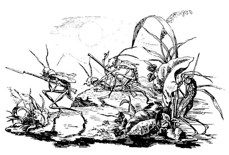 Löjtnant gräshoppa för sina mannar i fält