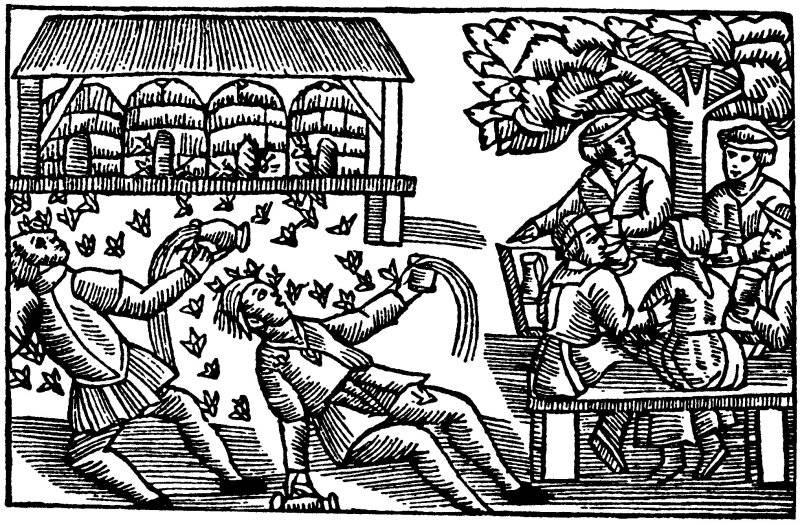 Om bin, som anfalla berusade personer